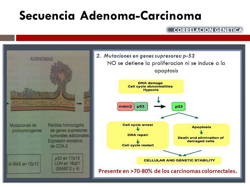 Presente en ˃70-80% de los carcinomas colorrectales.