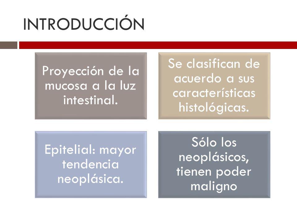 INTRODUCCIÓN Proyección de la mucosa a la luz intestinal. Se clasifican de acuerdo a sus características histológicas.