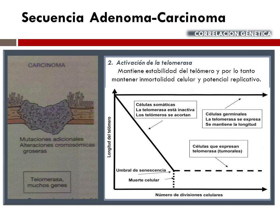 Secuencia Adenoma-Carcinoma