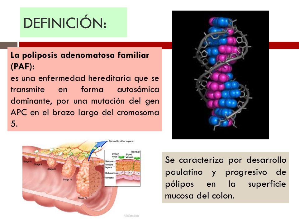 DEFINICIÓN: La poliposis adenomatosa familiar (PAF):