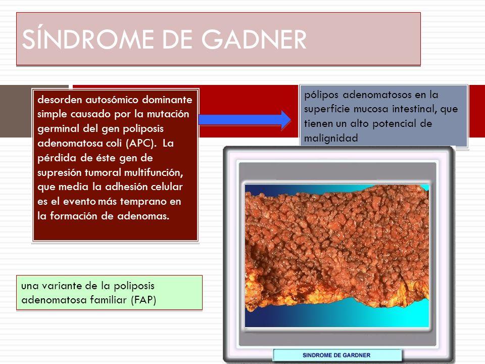 SÍNDROME DE GADNER pólipos adenomatosos en la superficie mucosa intestinal, que tienen un alto potencial de malignidad.