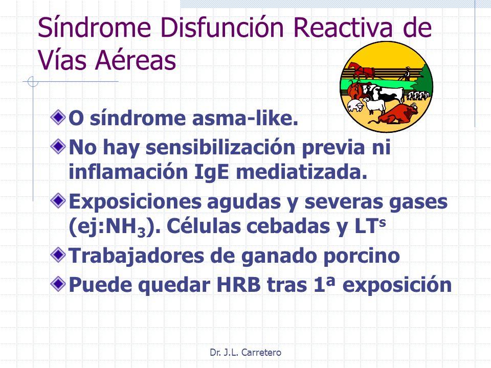Síndrome Disfunción Reactiva de Vías Aéreas