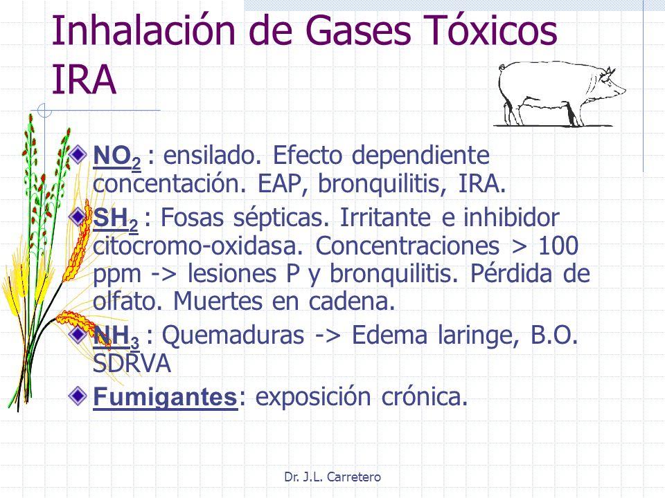 Inhalación de Gases Tóxicos IRA