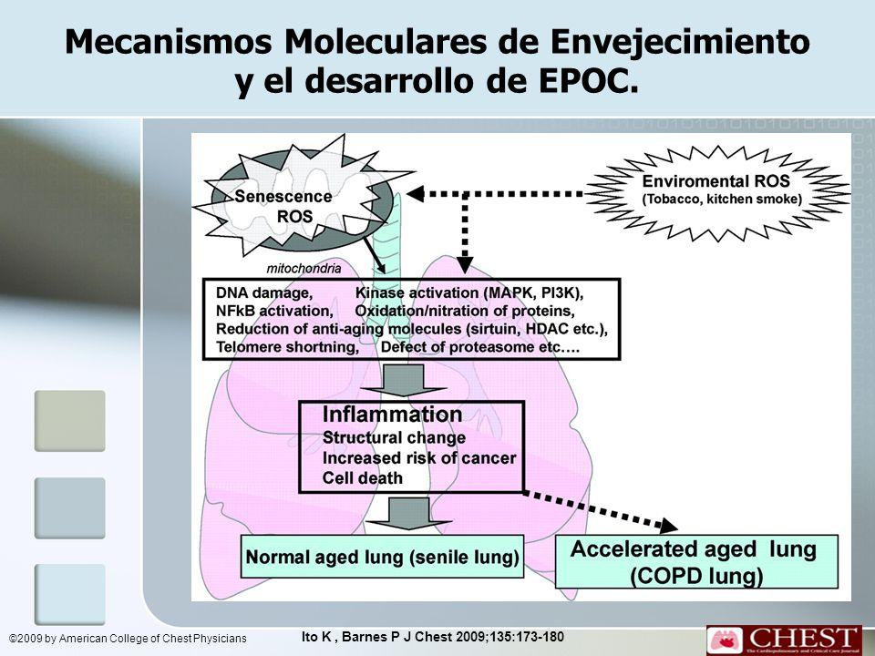 Mecanismos Moleculares de Envejecimiento y el desarrollo de EPOC.