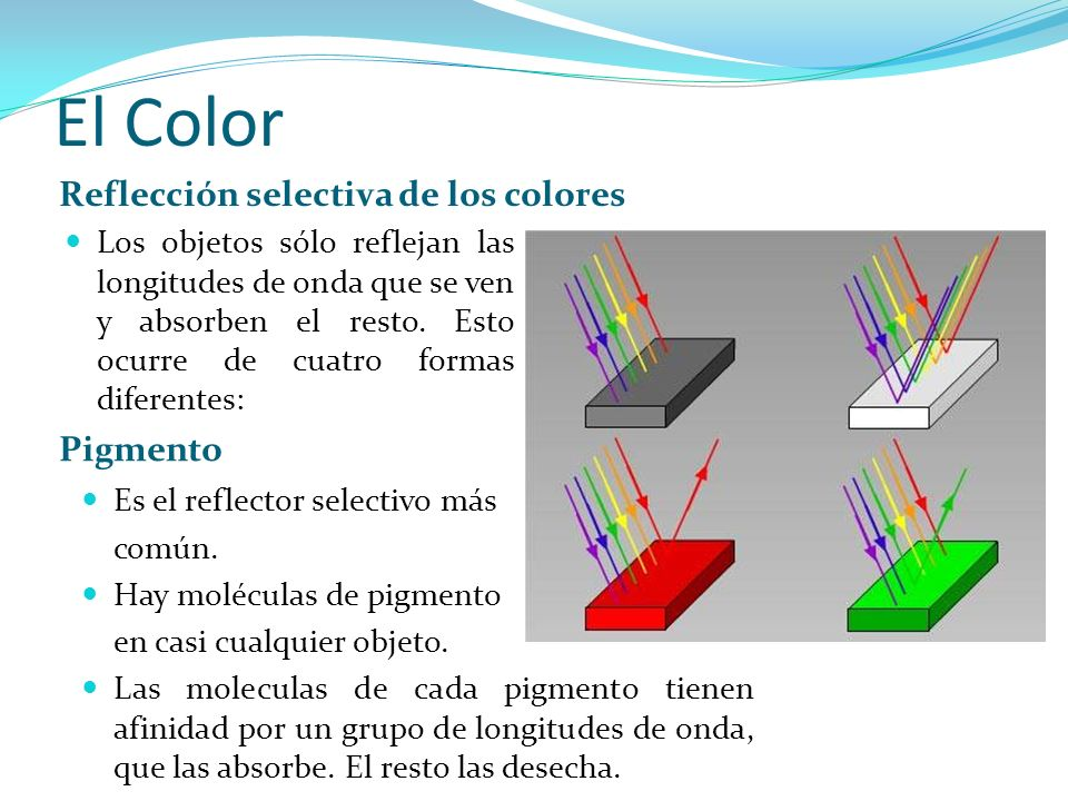 El Color Reflección selectiva de los colores Pigmento