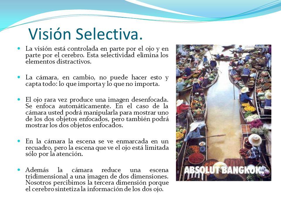 Visión Selectiva. La visión está controlada en parte por el ojo y en parte por el cerebro. Esta selectividad elimina los elementos distractivos.
