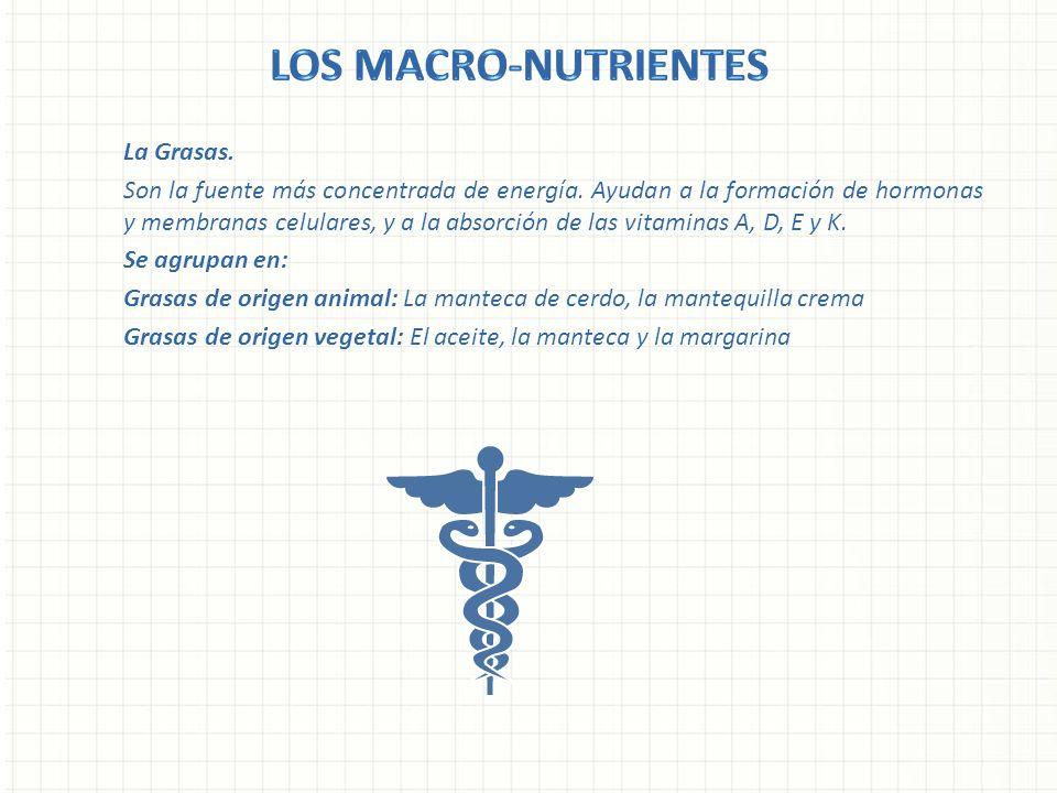 Los Macro-nutrientes La Grasas.