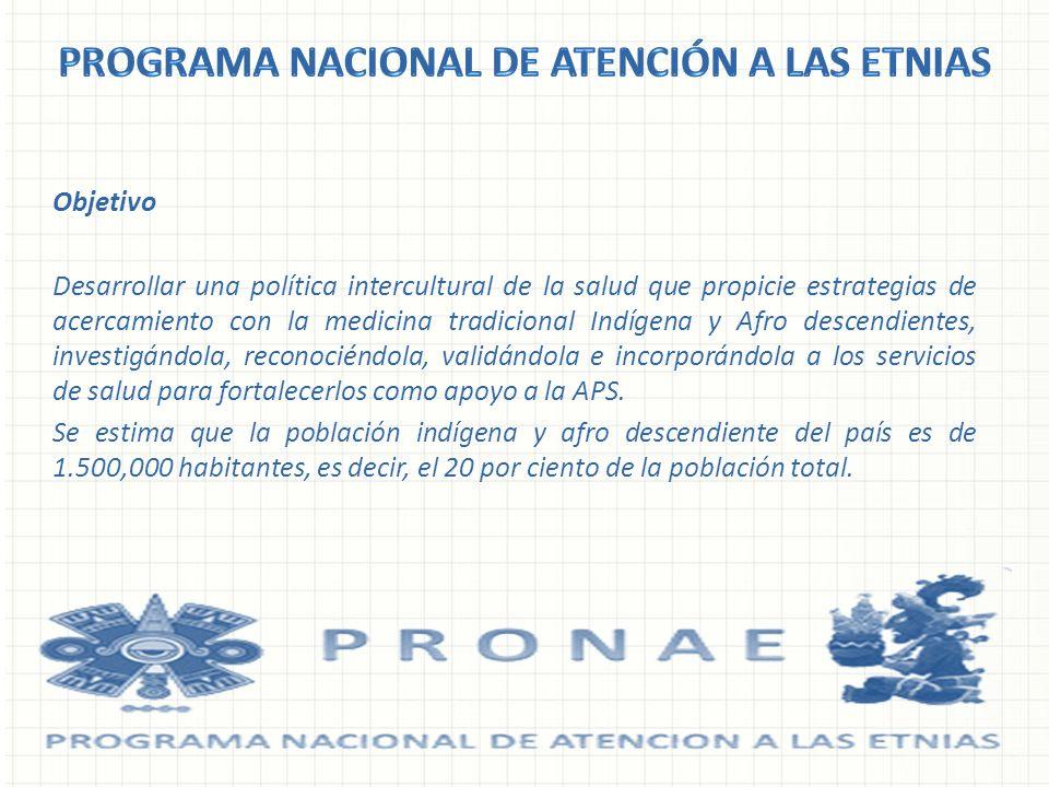 Programa Nacional de atención a las Etnias