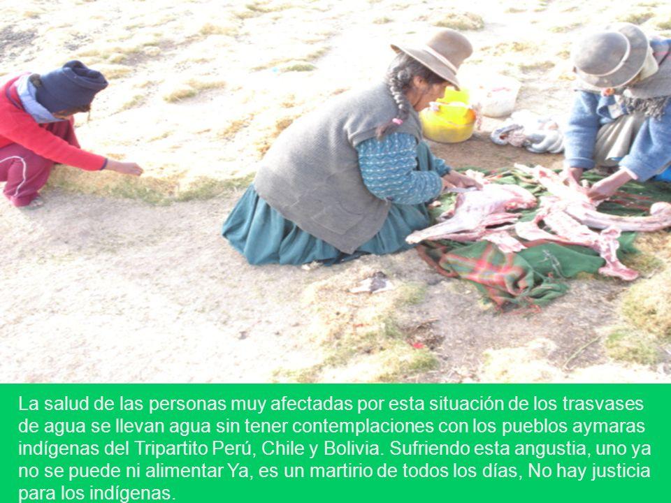La salud de las personas muy afectadas por esta situación de los trasvases de agua se llevan agua sin tener contemplaciones con los pueblos aymaras indígenas del Tripartito Perú, Chile y Bolivia.