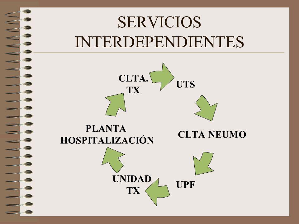 SERVICIOS INTERDEPENDIENTES