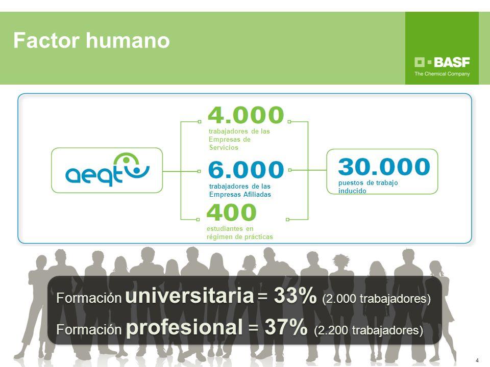 Factor humano Formación universitaria = 33% (2.000 trabajadores)