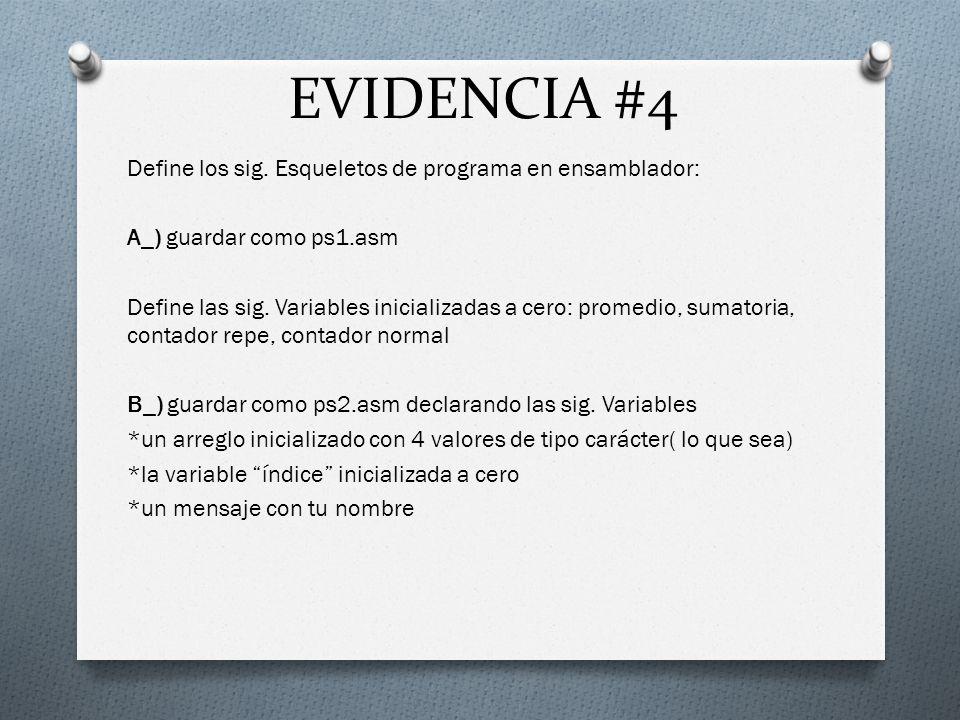 EVIDENCIA #4