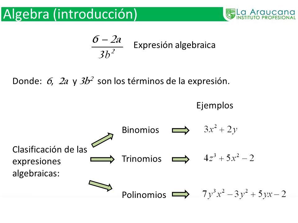 Algebra (introducción)