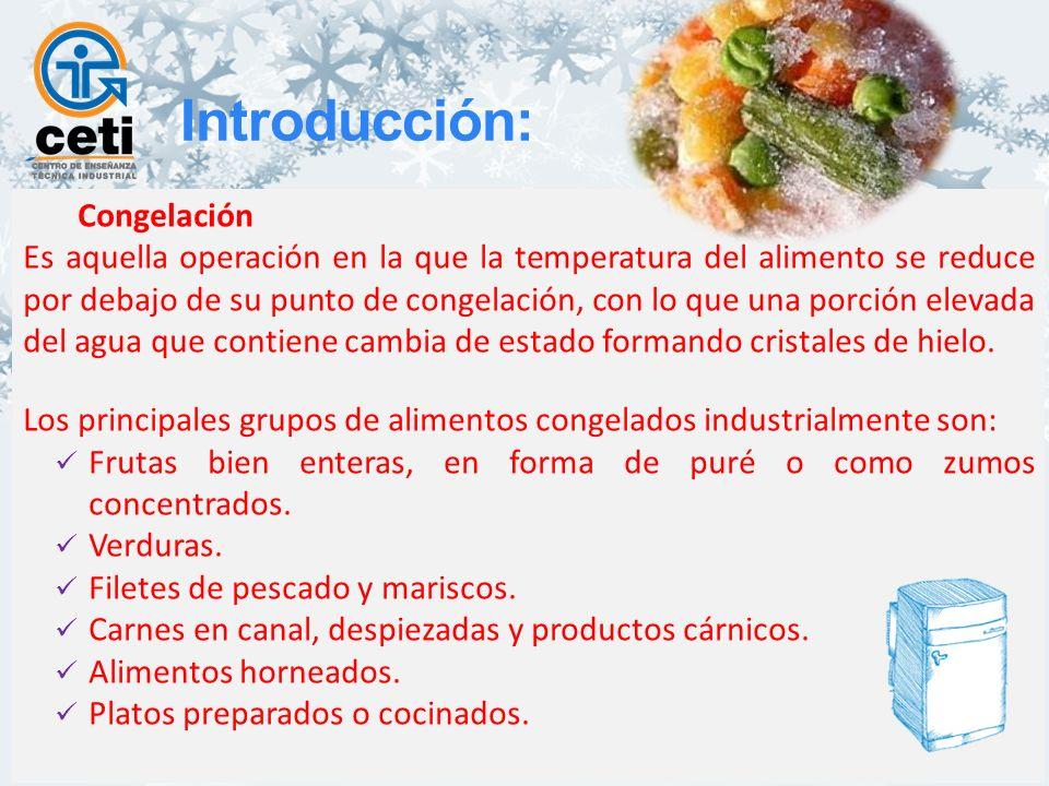 Introducción: Congelación
