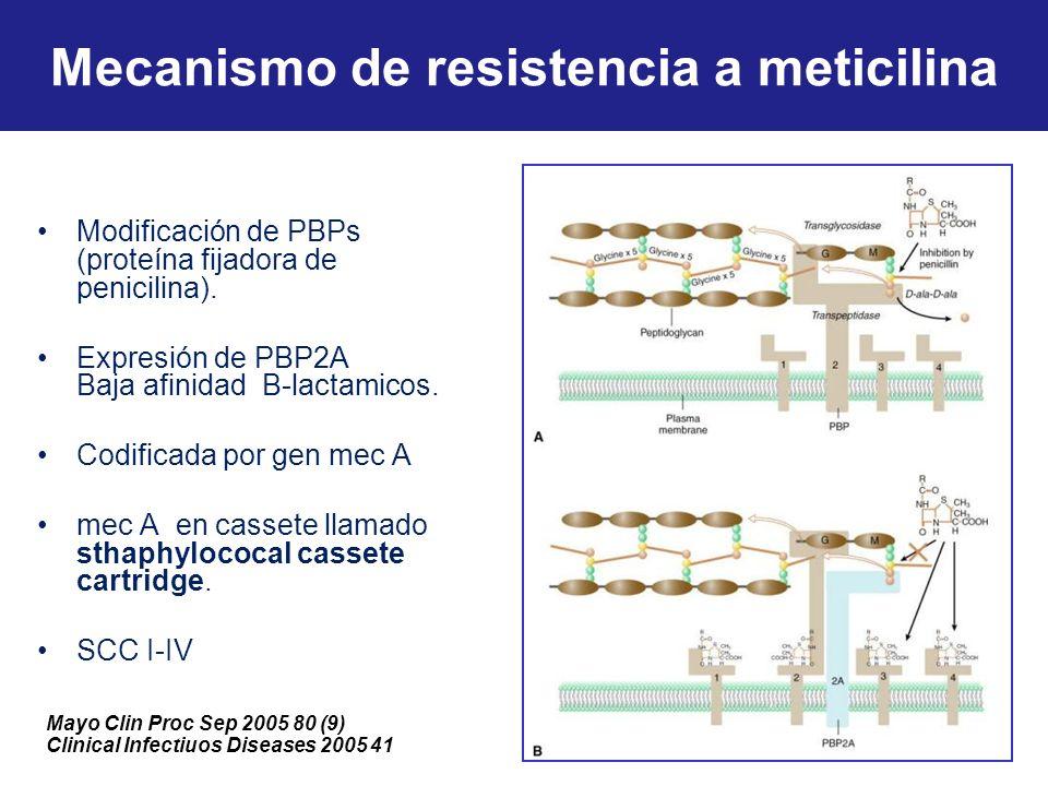 Mecanismo de resistencia a meticilina