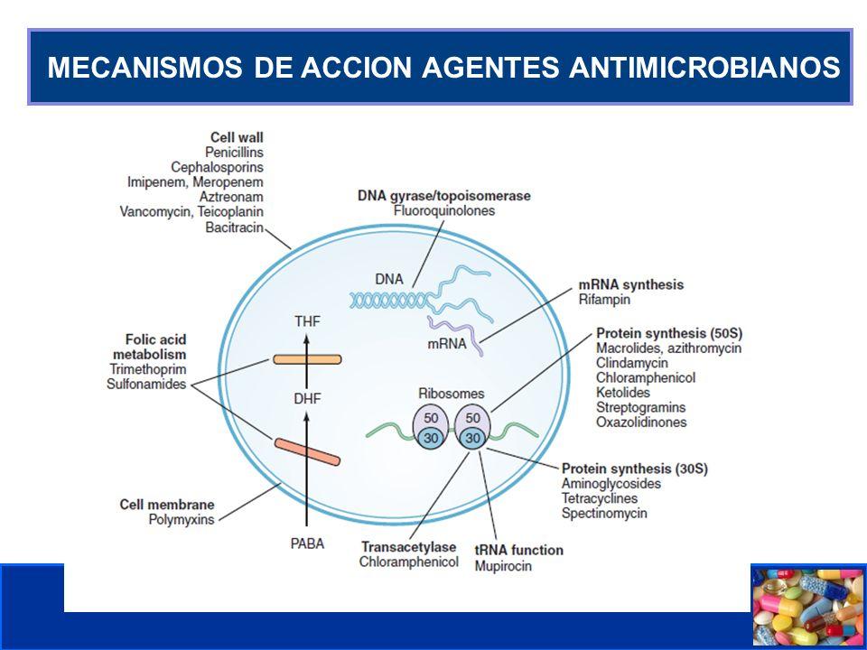 MECANISMOS DE ACCION AGENTES ANTIMICROBIANOS