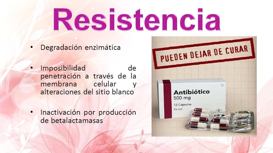 Resistencia Degradación enzimática