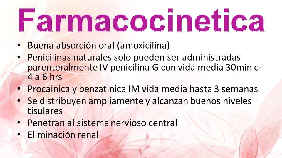 Farmacocinetica Buena absorción oral (amoxicilina)