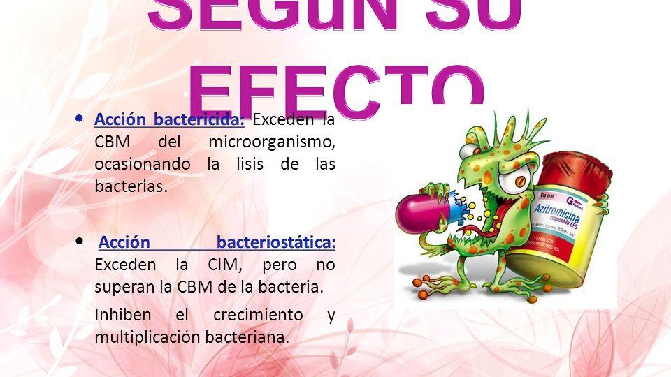 SEGuN SU EFECTO Acción bactericida: Exceden la CBM del microorganismo, ocasionando la lisis de las bacterias.