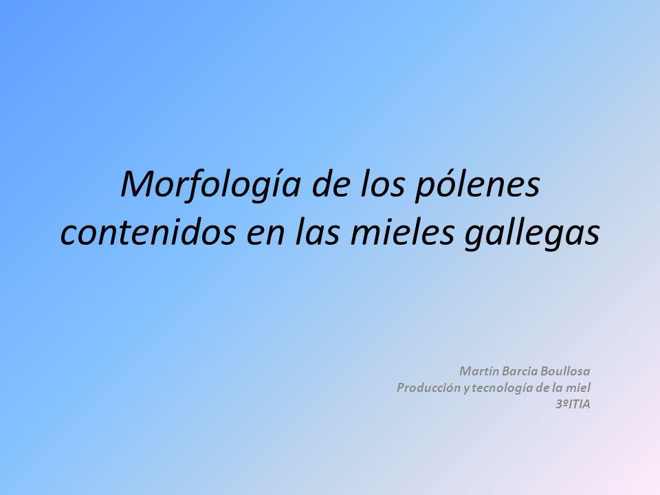 Morfología de los pólenes contenidos en las mieles gallegas