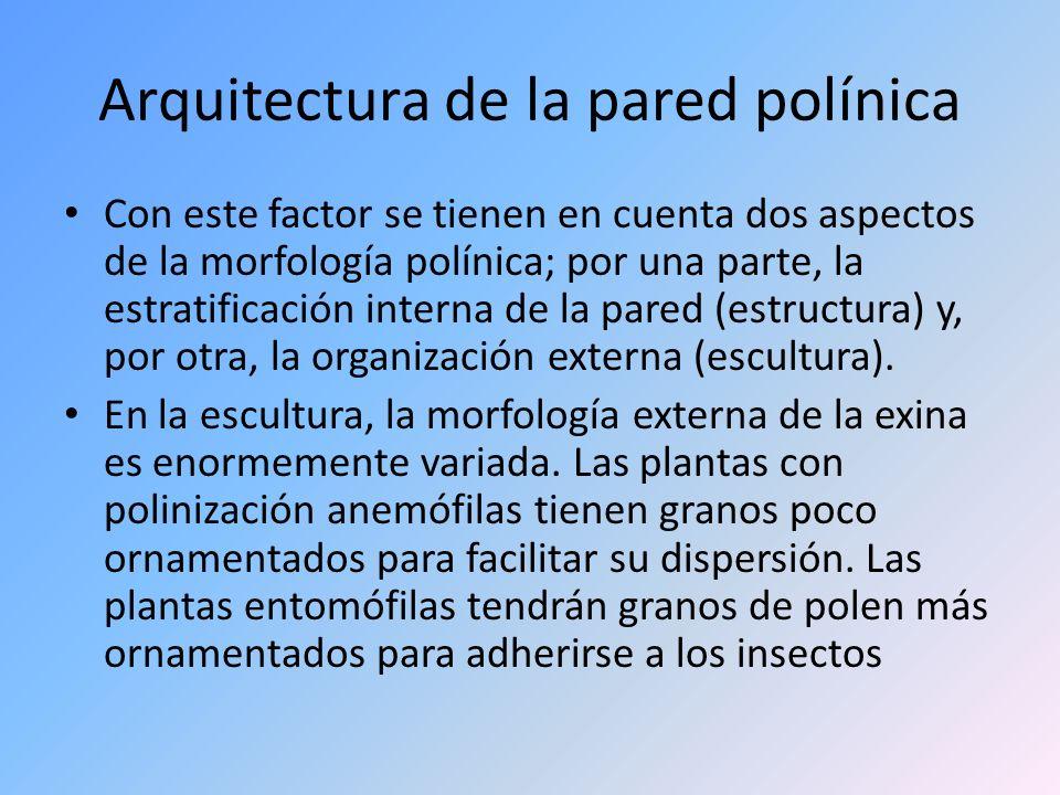 Arquitectura de la pared polínica