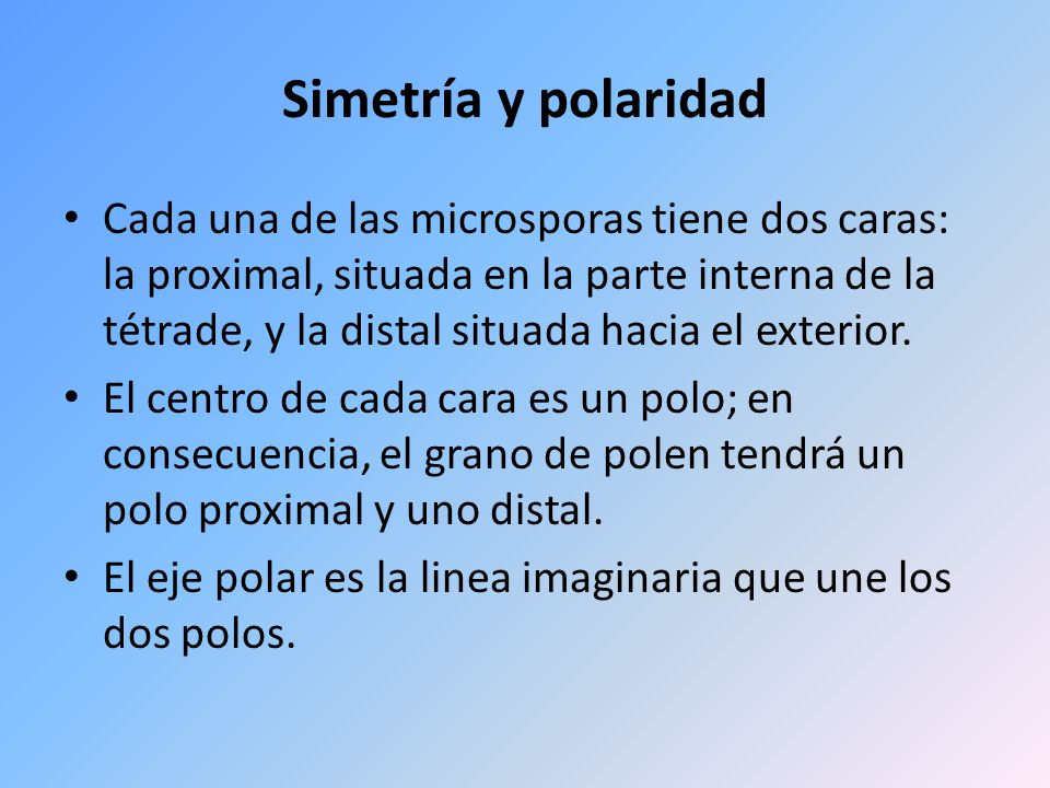 Simetría y polaridad