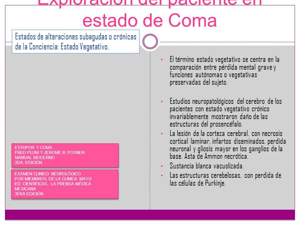 Exploración del paciente en estado de Coma