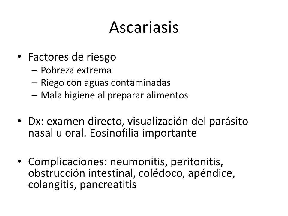 Ascariasis Factores de riesgo