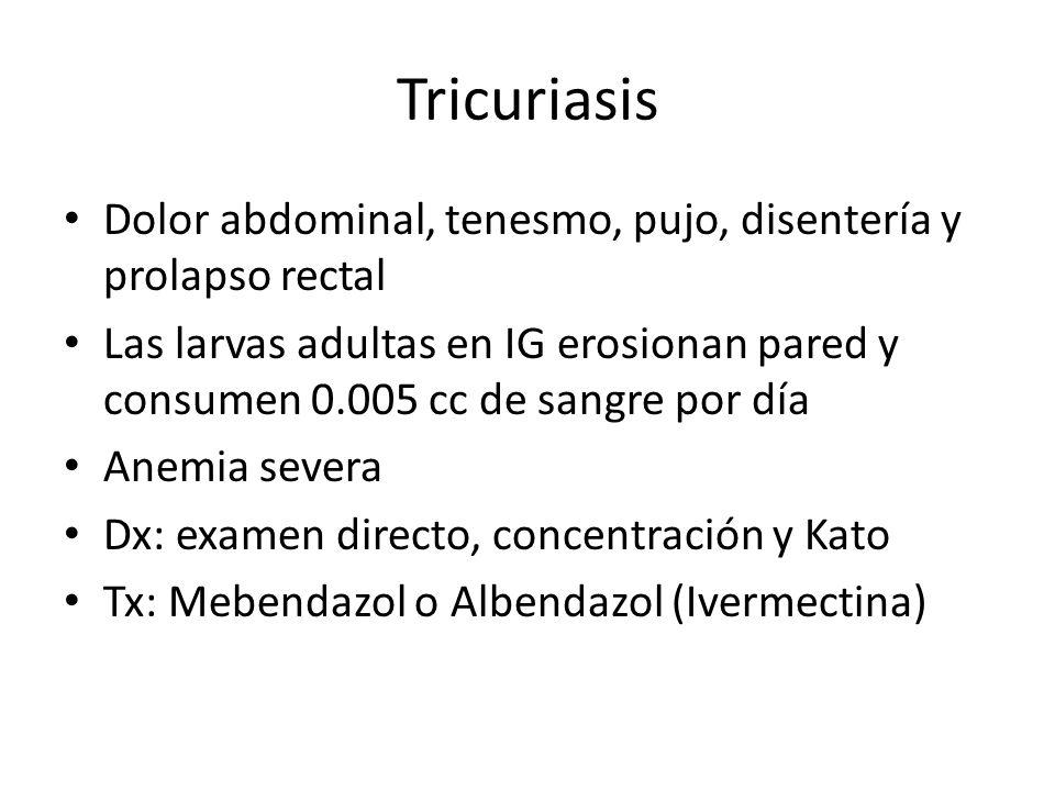 Tricuriasis Dolor abdominal, tenesmo, pujo, disentería y prolapso rectal.