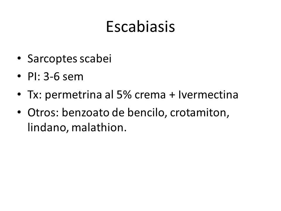 Escabiasis Sarcoptes scabei PI: 3-6 sem