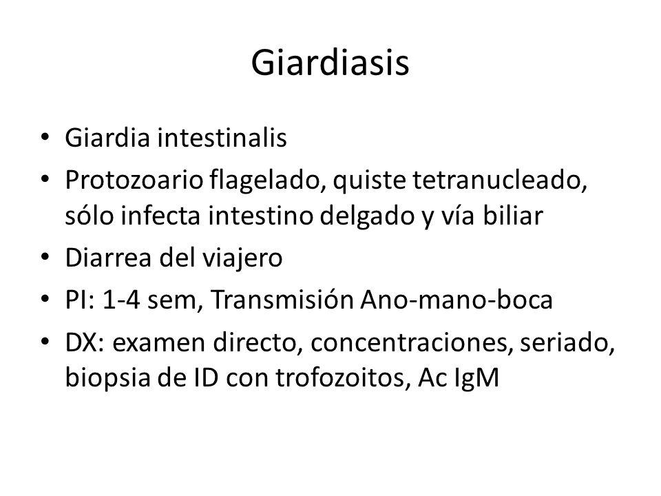Giardiasis Giardia intestinalis