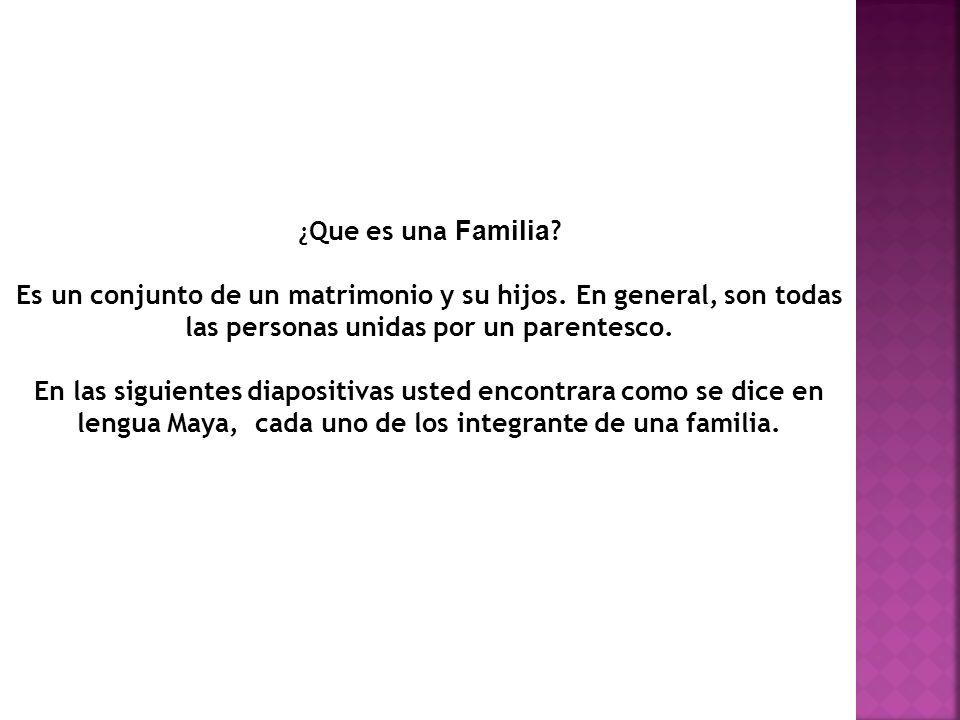¿Que es una Familia Es un conjunto de un matrimonio y su hijos. En general, son todas las personas unidas por un parentesco.