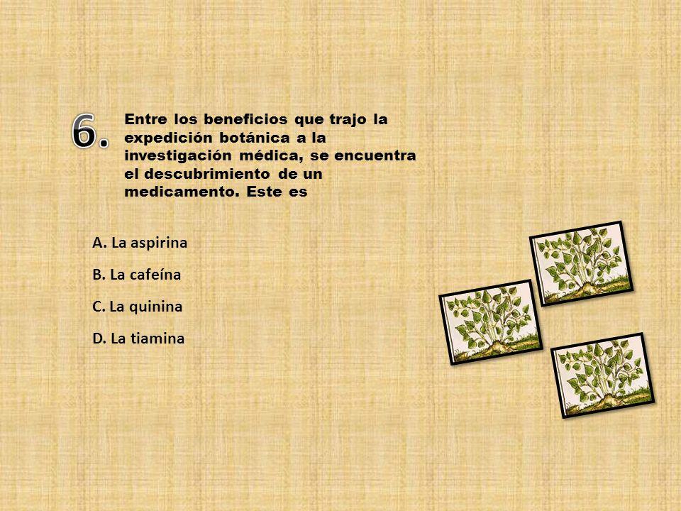 6. A. La aspirina B. La cafeína C. La quinina D. La tiamina