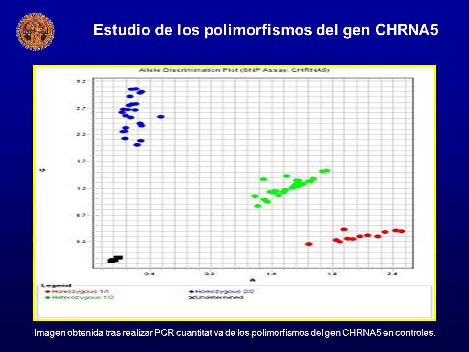Estudio de los polimorfismos del gen CHRNA5