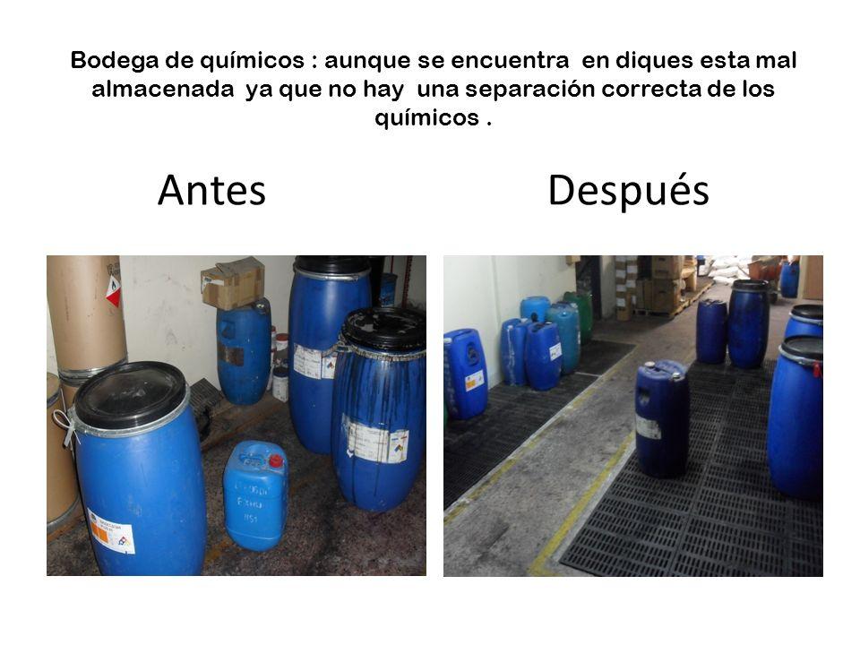 Bodega de químicos : aunque se encuentra en diques esta mal almacenada ya que no hay una separación correcta de los químicos .