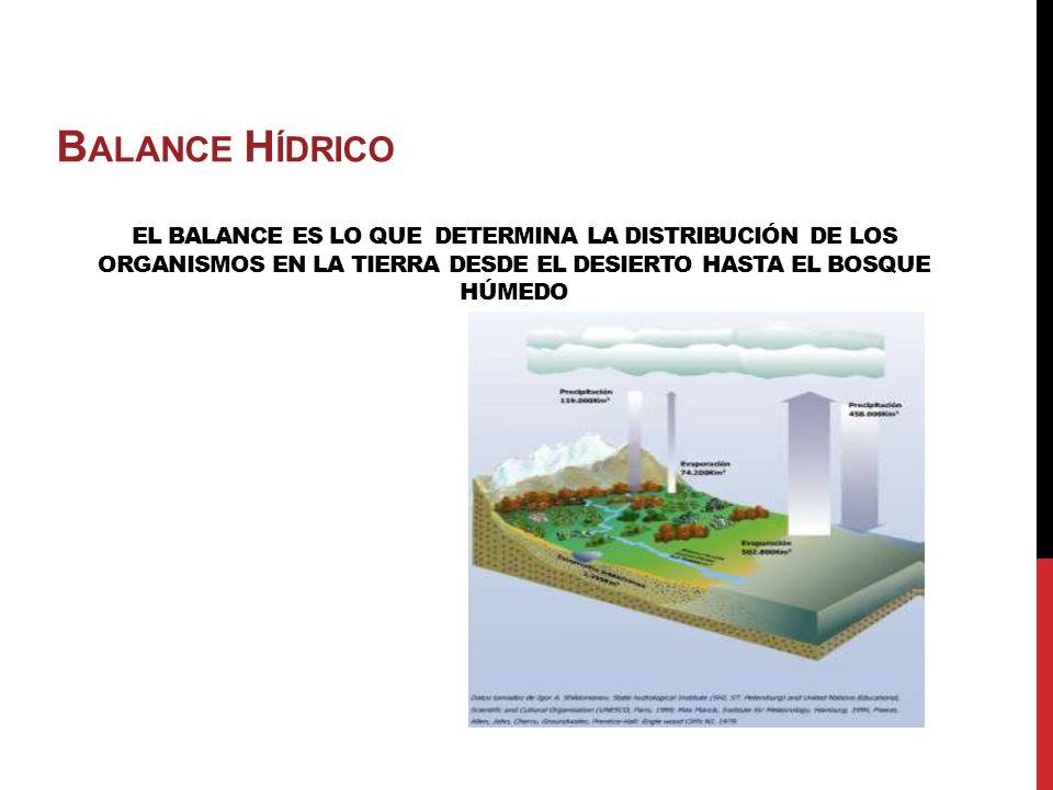 BALANCE HÍDRICO El balance es lo que Determina la distribución de los Organismos en la Tierra desde el desierto hasta el bosque húmedo.