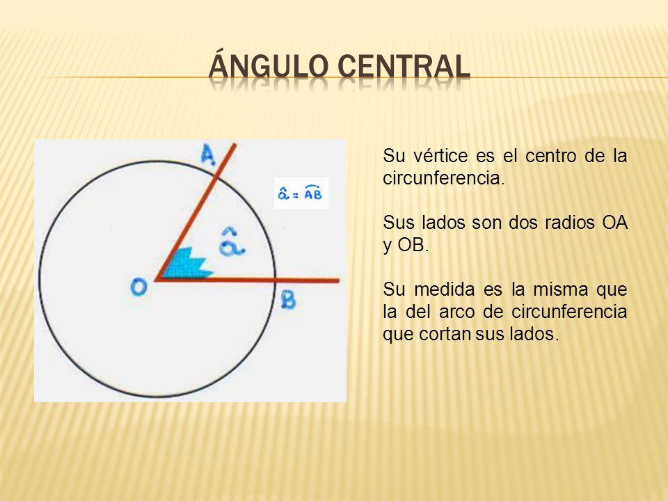 ÁNGULO CENTRAL Su vértice es el centro de la circunferencia.