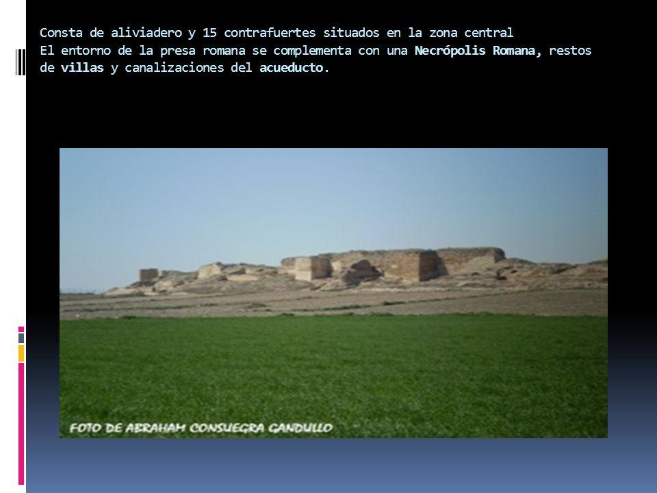 Consta de aliviadero y 15 contrafuertes situados en la zona central El entorno de la presa romana se complementa con una Necrópolis Romana, restos de villas y canalizaciones del acueducto.