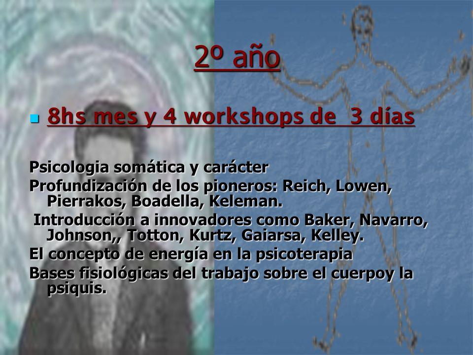 2º año 8hs mes y 4 workshops de 3 días Psicologia somática y carácter