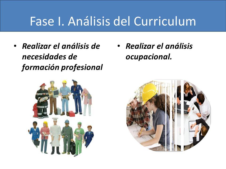 Fase I. Análisis del Curriculum