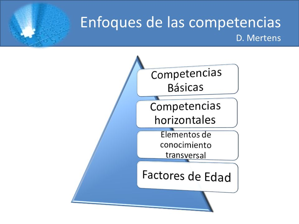 Enfoques de las competencias D. Mertens