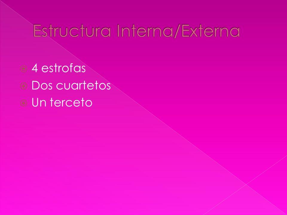 Estructura Interna/Externa