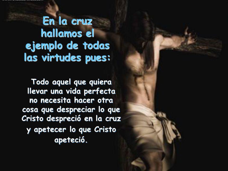 En la cruz hallamos el ejemplo de todas las virtudes pues:
