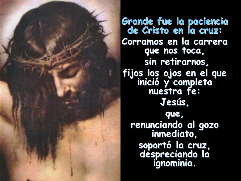 Grande fue la paciencia de Cristo en la cruz: