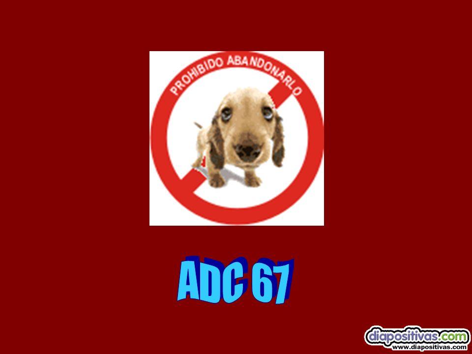 A D C 6 7