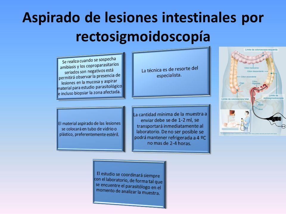 Aspirado de lesiones intestinales por rectosigmoidoscopía