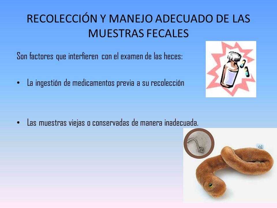 RECOLECCIÓN Y MANEJO ADECUADO DE LAS MUESTRAS FECALES