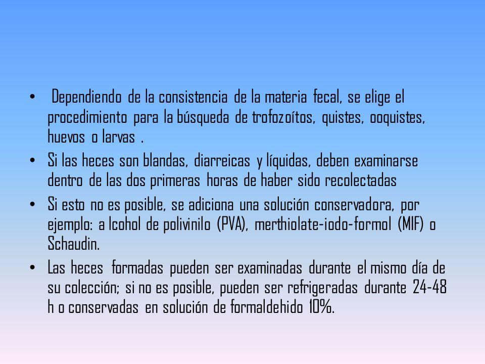 Dependiendo de la consistencia de la materia fecal, se elige el procedimiento para la búsqueda de trofozoítos, quistes, ooquistes, huevos o larvas .