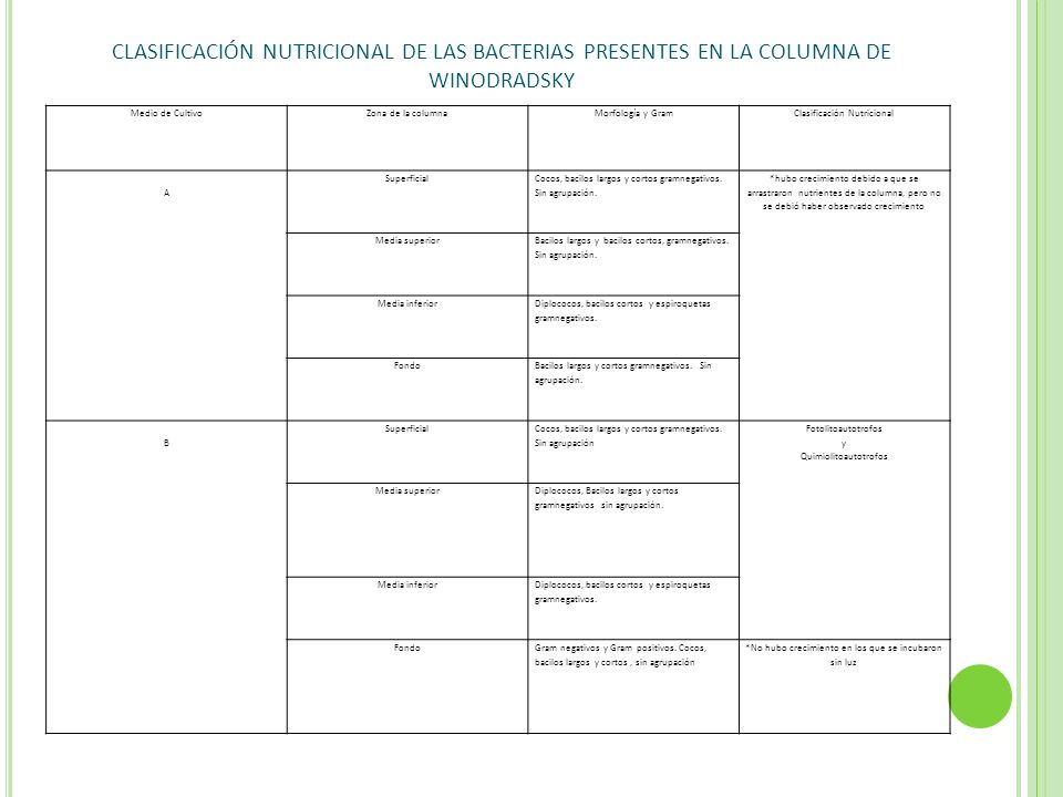 CLASIFICACIÓN NUTRICIONAL DE LAS BACTERIAS PRESENTES EN LA COLUMNA DE WINODRADSKY