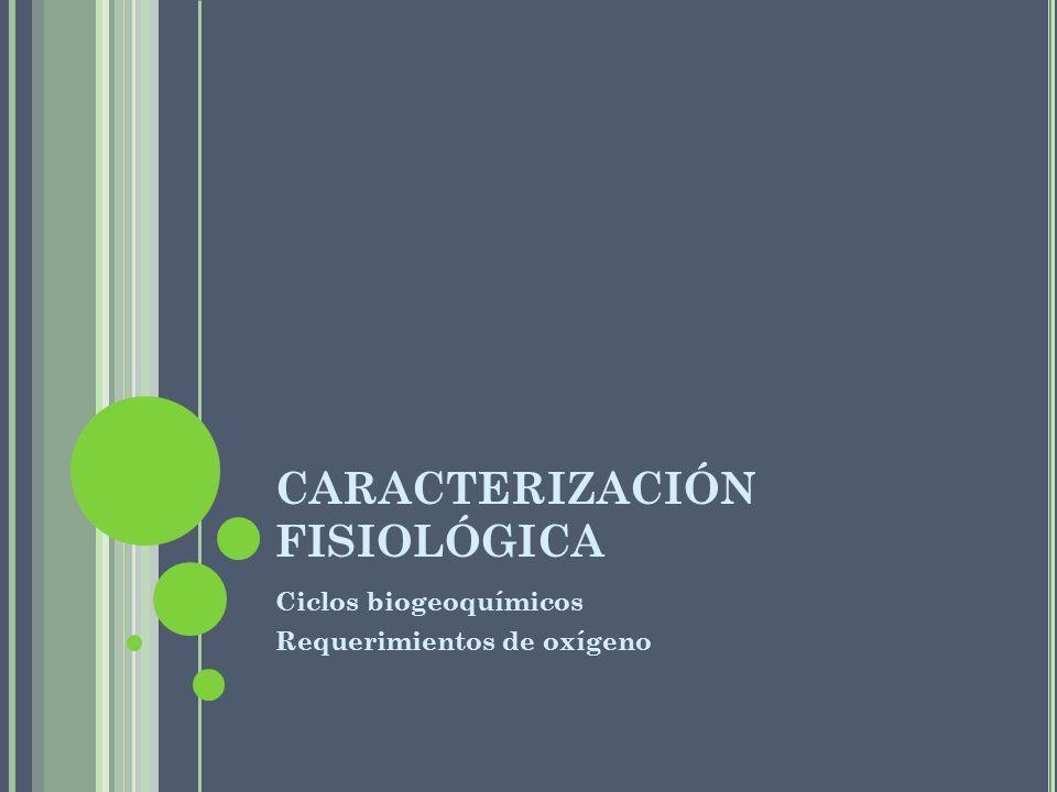 CARACTERIZACIÓN FISIOLÓGICA